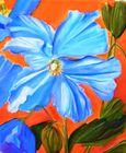 Flowers from a Secret Garden: Blue Poppy