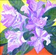 Flowers from a Secret Garden: Rhody